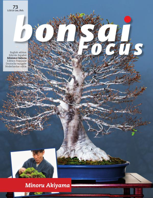 BONSAI FOCUS - Italiano 2018-1