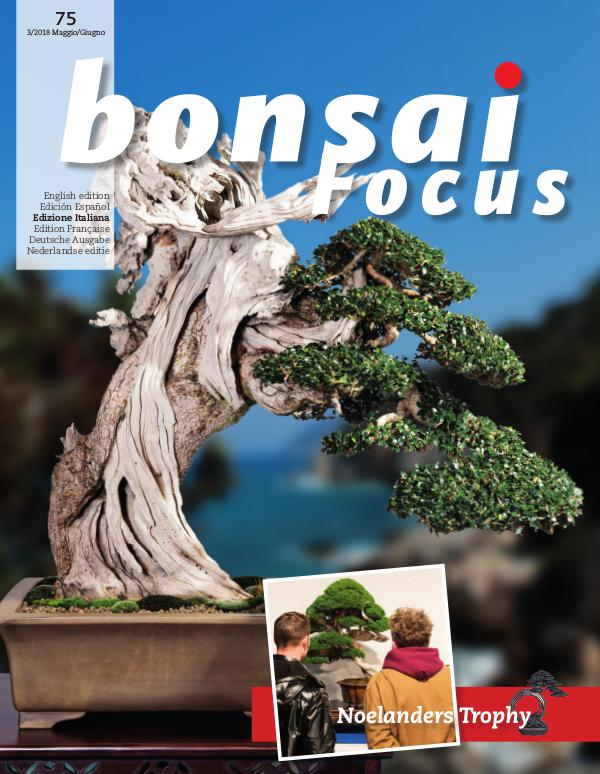 BONSAI FOCUS - Italiano 2018-3