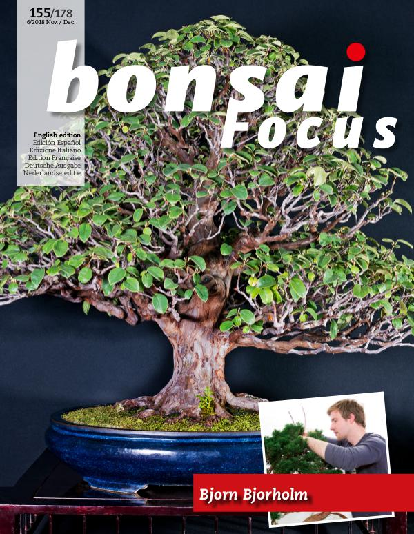 BONSAI FOCUS - English 2018-6