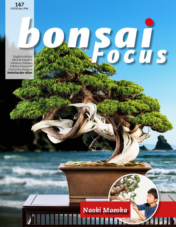 BONSAI FOCUS - Nederlands 2019-1