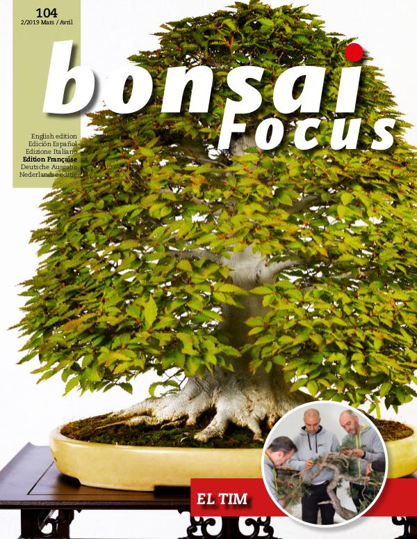 BONSAI FOCUS - Français 2019-2