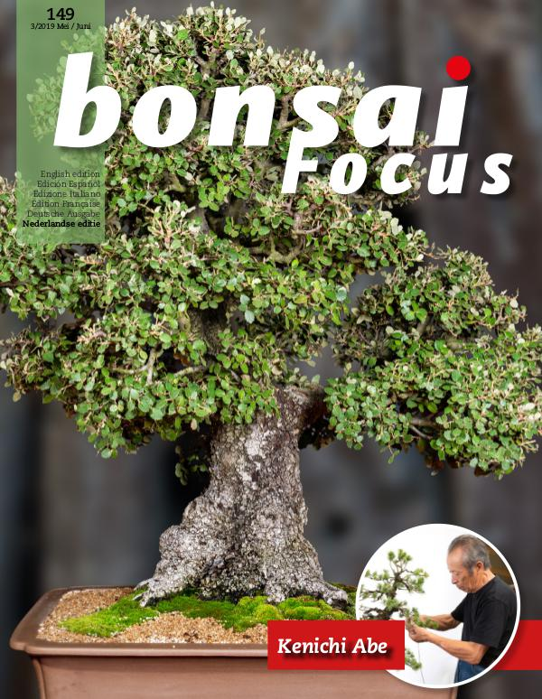 BONSAI FOCUS - Nederlands 2019-3