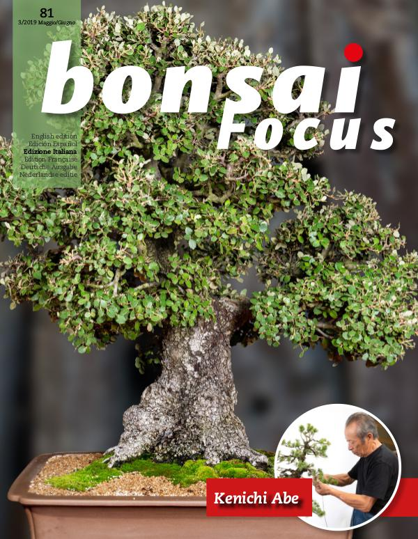 BONSAI FOCUS - Italiano 2019-3