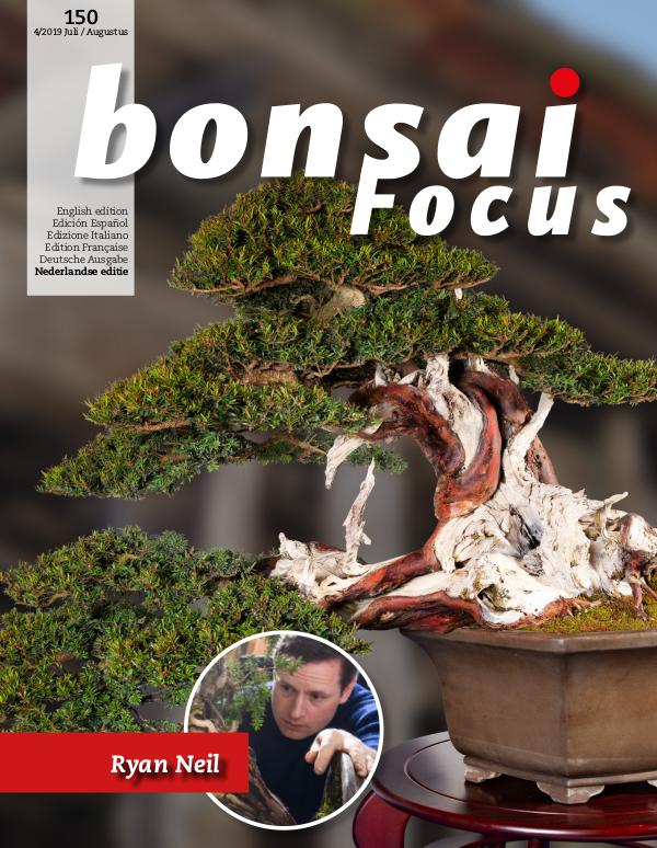 BONSAI FOCUS - Nederlands 2019-4