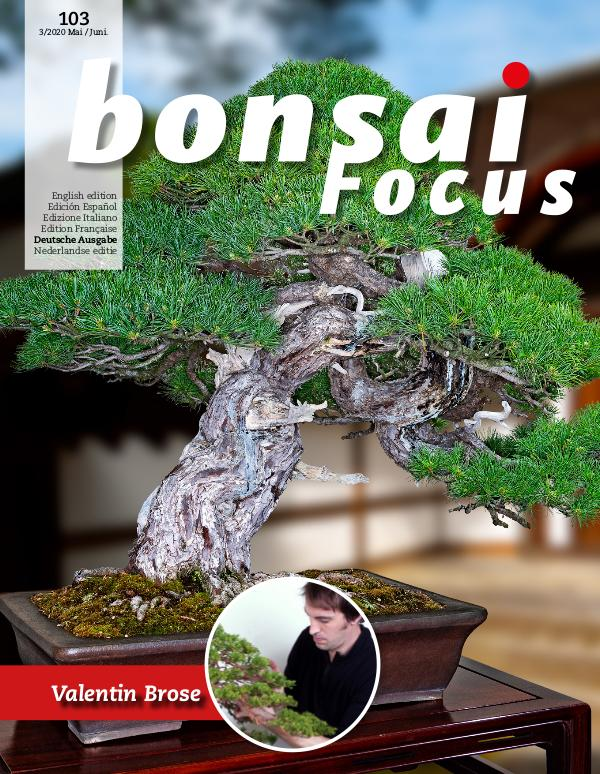 BONSAI FOCUS - Deutsch 2020-3