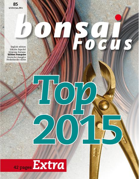 BONSAI FOCUS - Français 2016-1