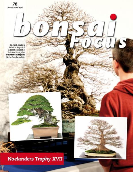 BONSAI FOCUS - Deutsch 2016-2