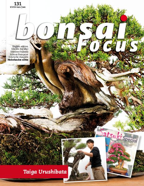 BONSAI FOCUS - Nederlands 2016-3