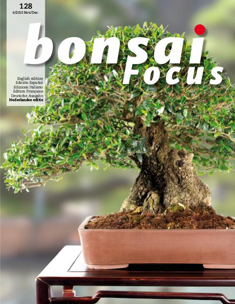 BONSAI FOCUS - Nederlands 2015-6