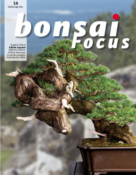 BONSAI FOCUS - Español 2015-5