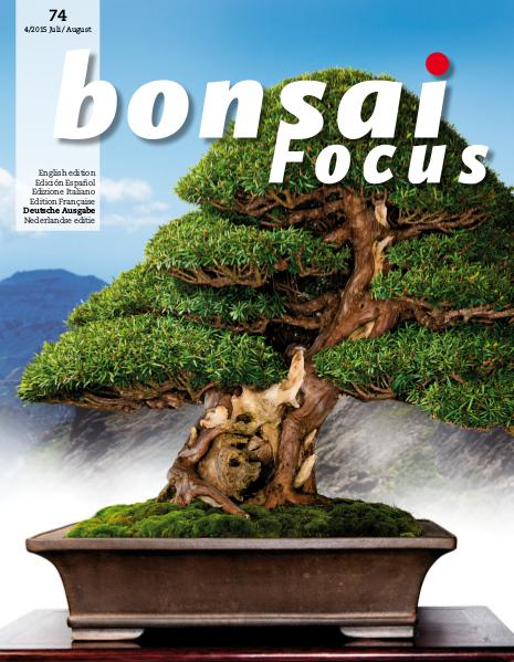 BONSAI FOCUS - Deutsch 2015-4