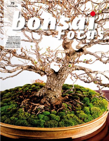 BONSAI FOCUS - Français 2015-1