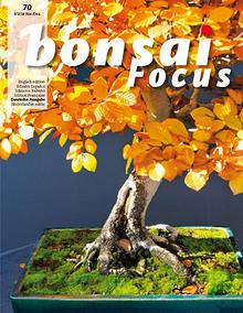 BONSAI FOCUS - Deutsch
