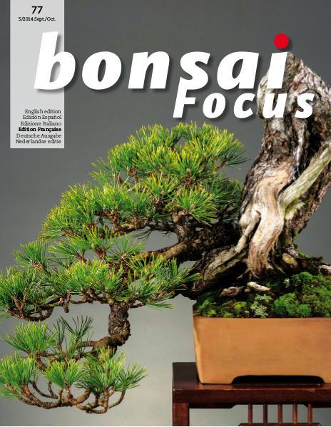 BONSAI FOCUS - Français 2014-5