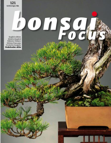 BONSAI FOCUS - Nederlands 2014-5