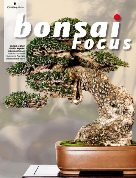 BONSAI FOCUS - Español 2014-3