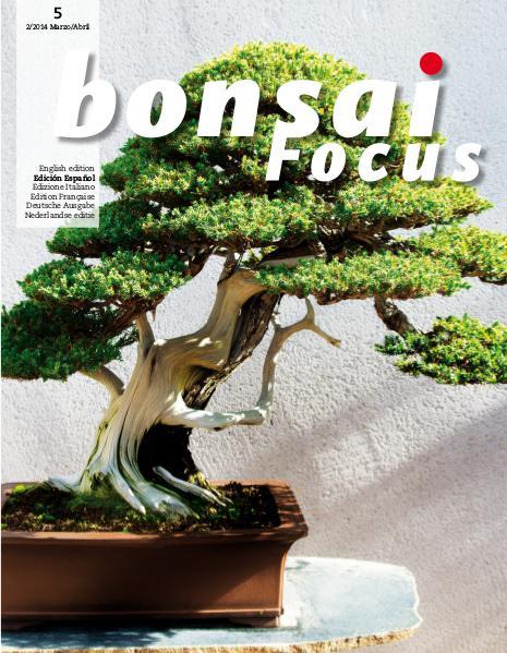 BONSAI FOCUS - Español 2014-2