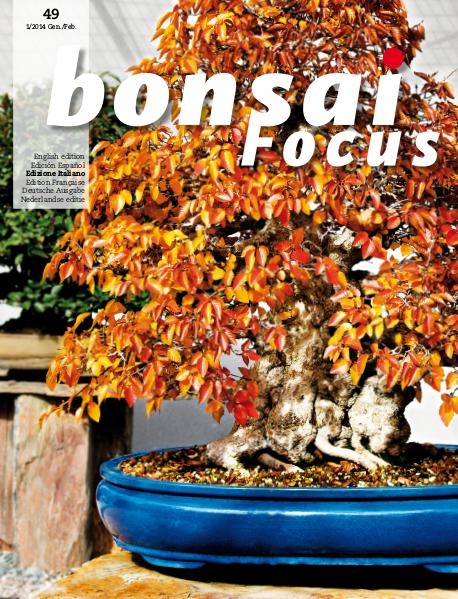 BONSAI FOCUS - Italiano 2014-1