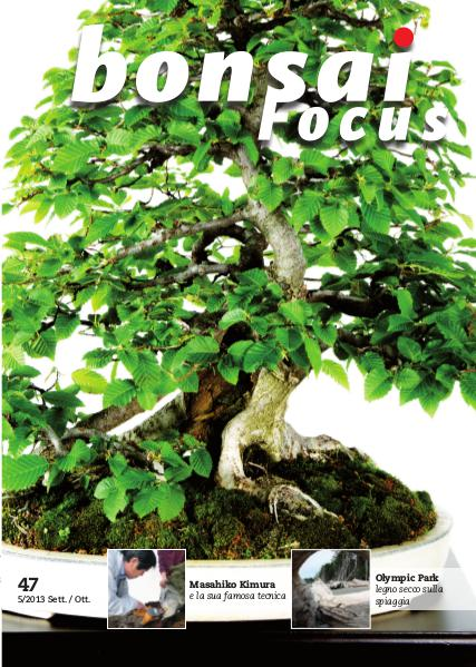 BONSAI FOCUS - Italiano 2013-5
