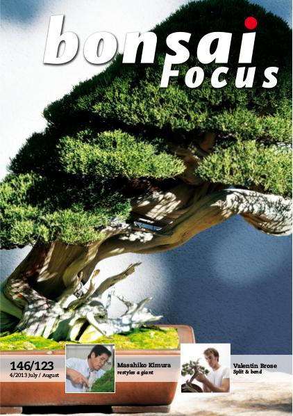BONSAI FOCUS - English 2013-4