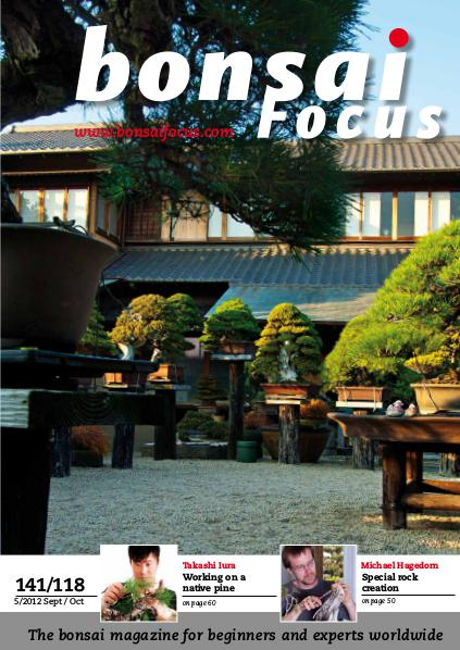BONSAI FOCUS - English 2012-5