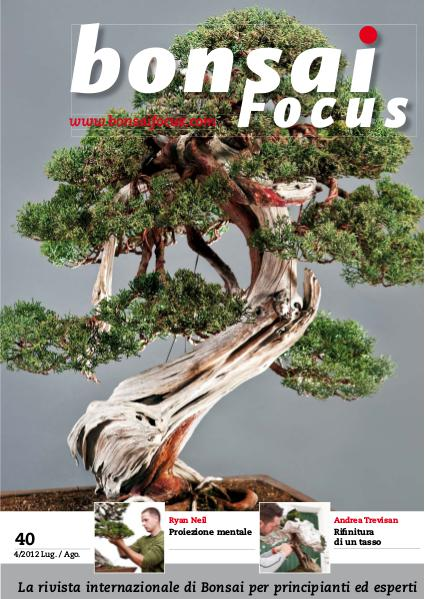 BONSAI FOCUS - Italiano 2012-4