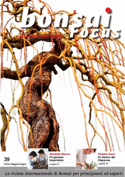 BONSAI FOCUS - Italiano 2012-3