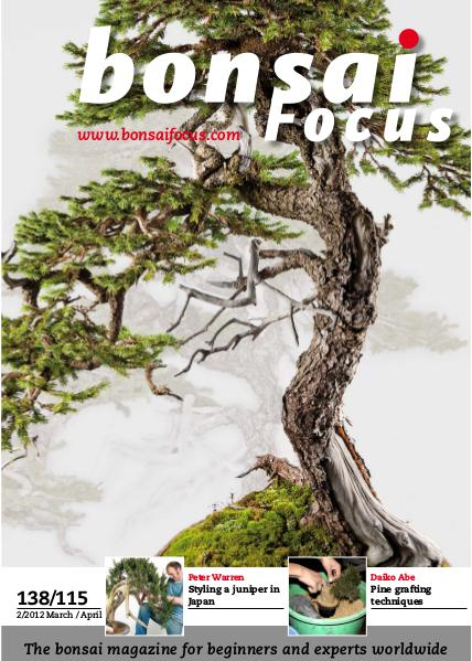 BONSAI FOCUS - English 2012-2