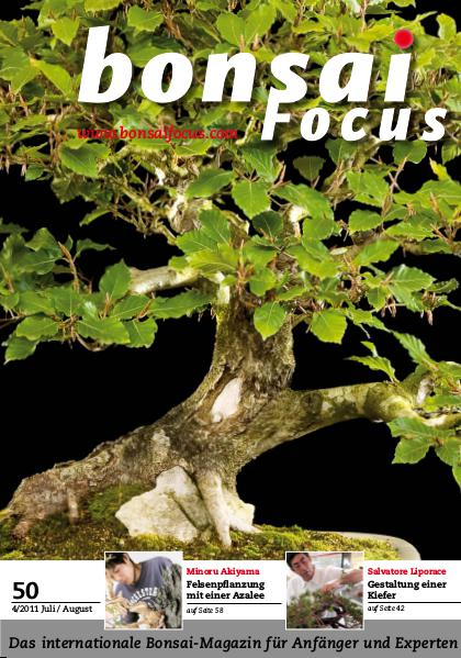 BONSAI FOCUS - Deutsch 2011-4