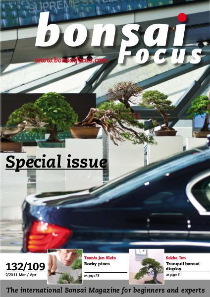 BONSAI FOCUS - English 2011-2