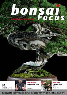 BONSAI FOCUS - Italiano