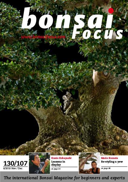 BONSAI FOCUS - English 2010-6
