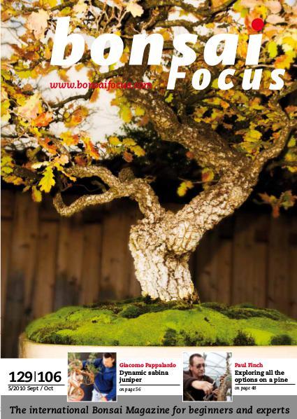 BONSAI FOCUS - English 2010-5