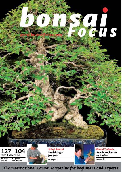BONSAI FOCUS - English 2010-3