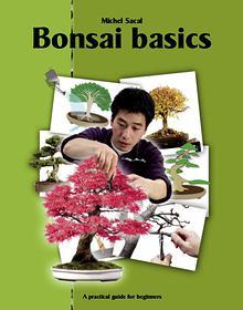 E-books (English)