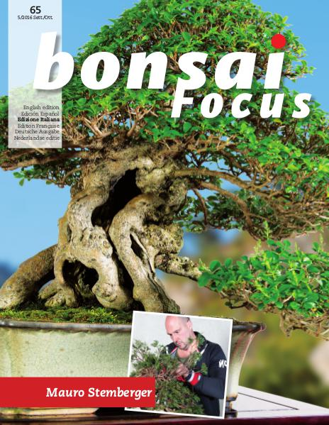 BONSAI FOCUS - Italiano 2016-5