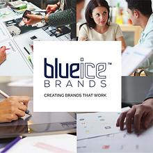 Blueice Brands Brochure