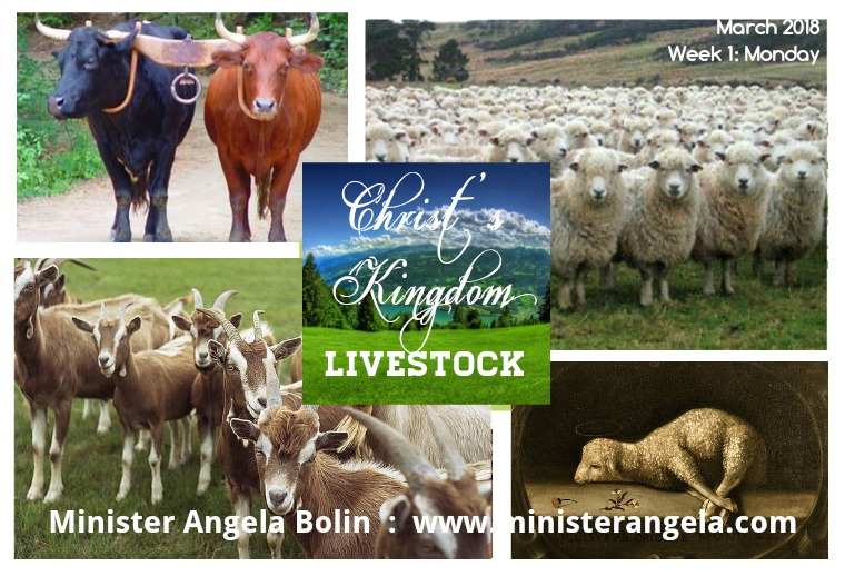 The Livestock of Christ's Kingdom Monday:  The Lost Sheep