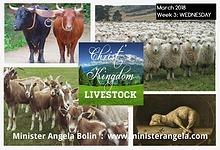 March 2018 Week 3:  Oxen