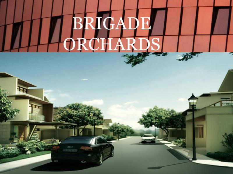 BRIGADE ORCHARDS BRIGADE ORCHARDS