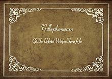 NullwpThemes.com