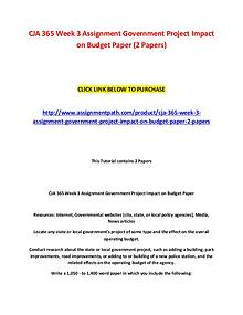 CJA 365 Week 3 Assignment Government Project Impact on Budget Paper (