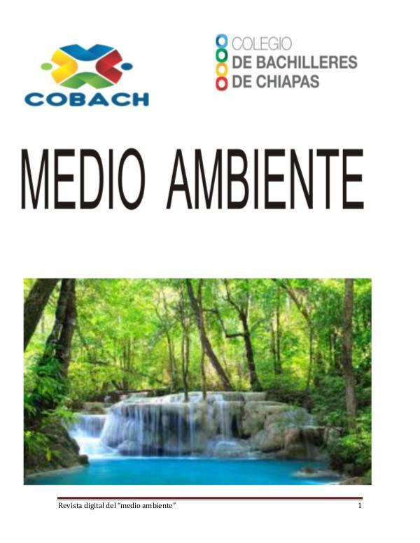 MEDIO AMBIENTE EL MEDIO AMBIENTE