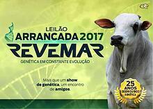 Catálogo Leilão Arrancada 2017 Revemar