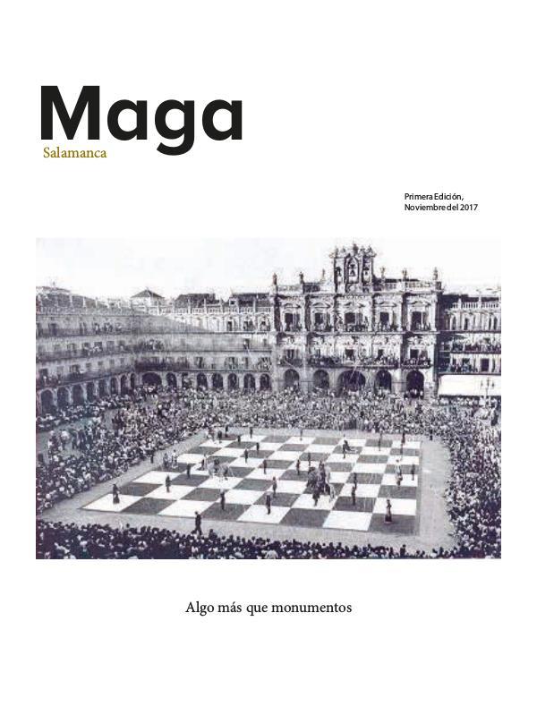 MEGA Salamanca Raul Herrera -TFM