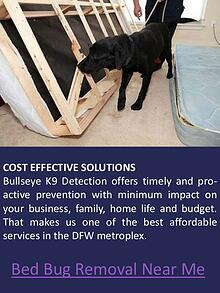 how much does bed bug heat treatment cost
