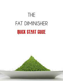 Fat Diminisher System PDF Free Download By Wesley Virgin Real & Fact