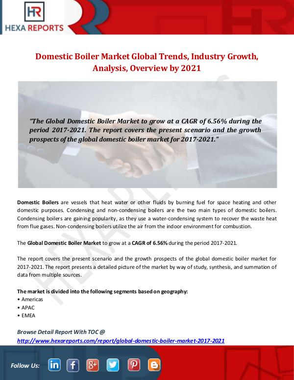 Domestic Boiler Market
