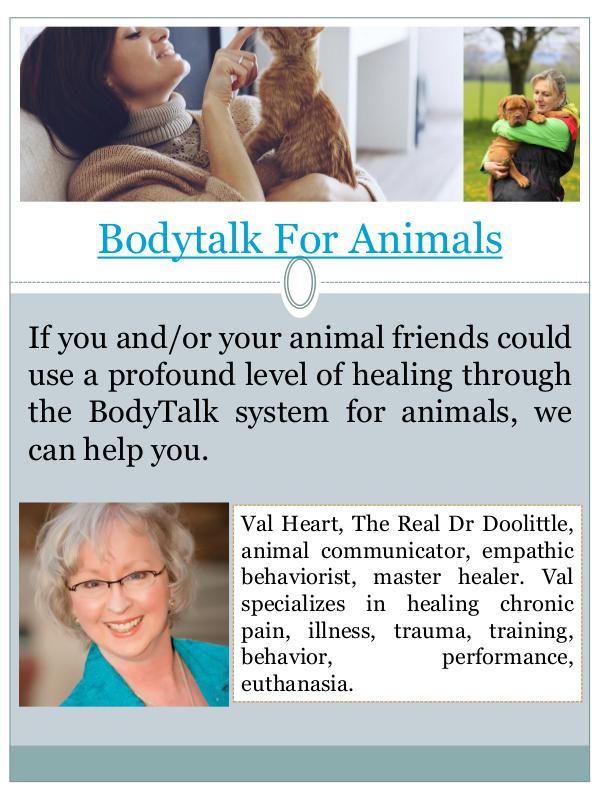 bodytalk for animals bodytalk for animals