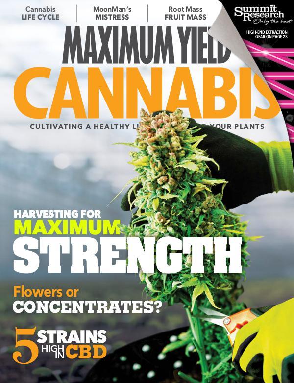 Maximum Yield Cannabis USA August/September 2018